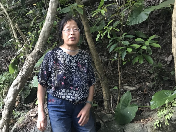 王姓遊客為退休老師,跟著攝影學會報團前來台灣進行為期7天的旅遊。記者徐庭揚/攝影