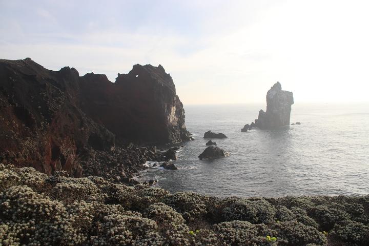 棉花嶼有豐富的火山地形,保留原始自然資源,與鄰近的花瓶嶼在1996年經公告,成為基隆唯一的野生動物保護區。記者曾健祐/攝影