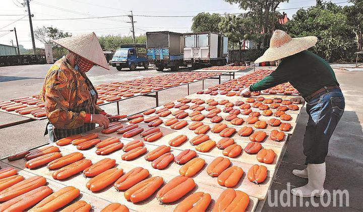 每年11月是烏魚子產期,東石、布袋沿海許多加工廠員工忙著曬烏魚子。本報資料照片 記者卜敏正/攝影