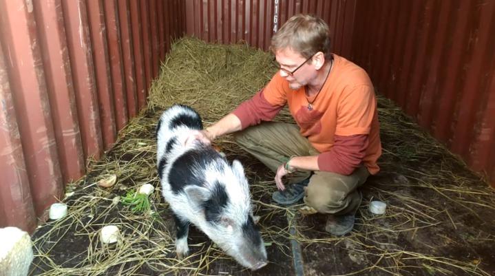 台灣巴克動物懷善救援協會( The PACK Sanctuary),它不只是動物的收容機構,更可說是生命教育場所,包括穿戴上輔具而能夠奔跑的癱瘓犬、重新學習站立的小豬等,能看到生命關懷的光明面。記者 董俞佳/攝影