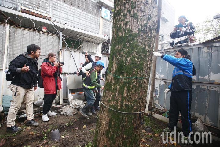 護樹團體與工人發生爭執。記者程宜華/攝影