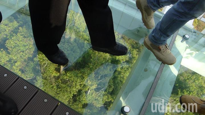 高雄市長陳菊穩穩踩著崗山之眼空中廊道玻璃觀景平台,強調平台的安全性。記者楊濡嘉/攝影