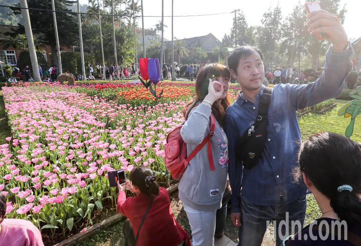 有民眾在花海前自拍。記者鄭清元/攝影