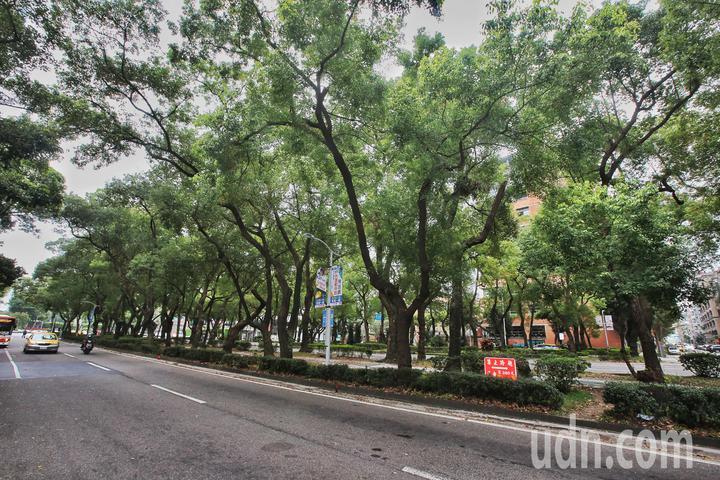 陸委會前副主委張顯耀表明要參選台北市長,誓言打造敦化南北路成為台北香榭大道。記者楊萬雲/攝影