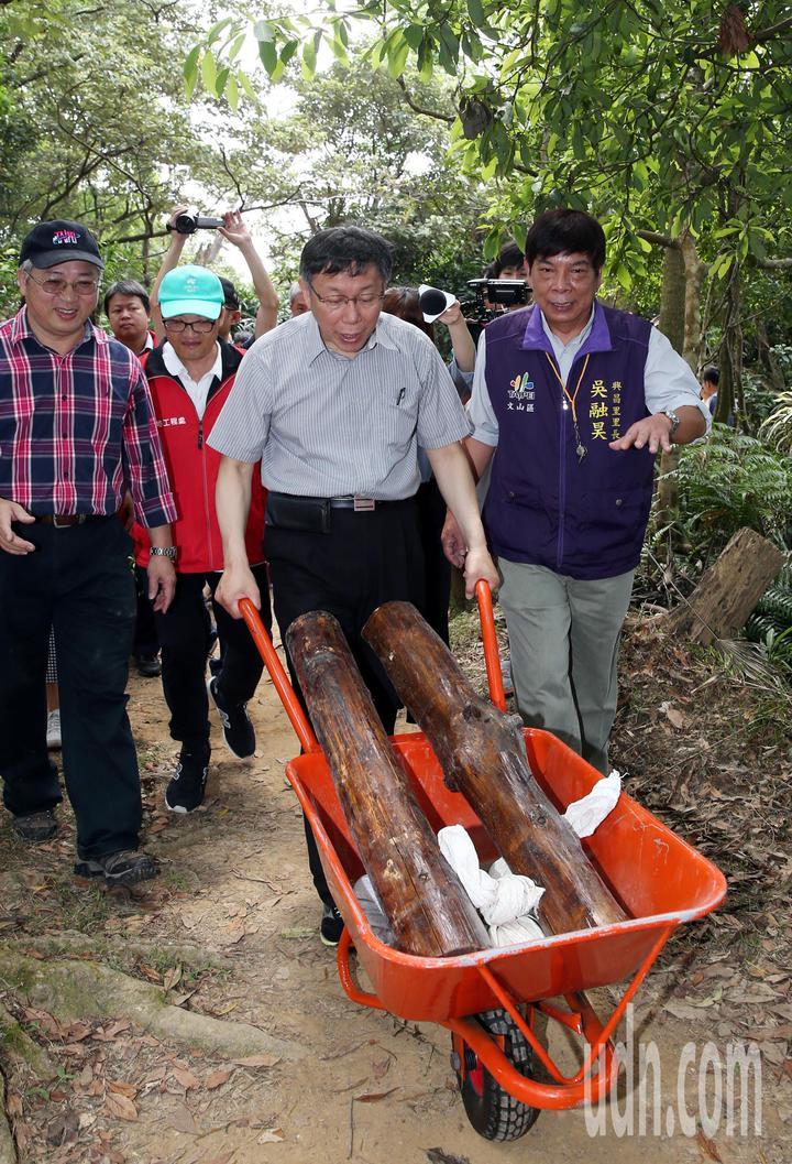 台北市長柯文哲上親自搬運木樁。記者侯永全/攝影