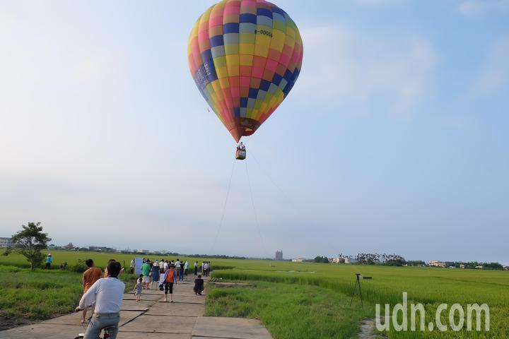 今天熱氣球在宜蘭小伯朗大道上首度升空,讓美景更添亮點。記者張芮瑜/攝影