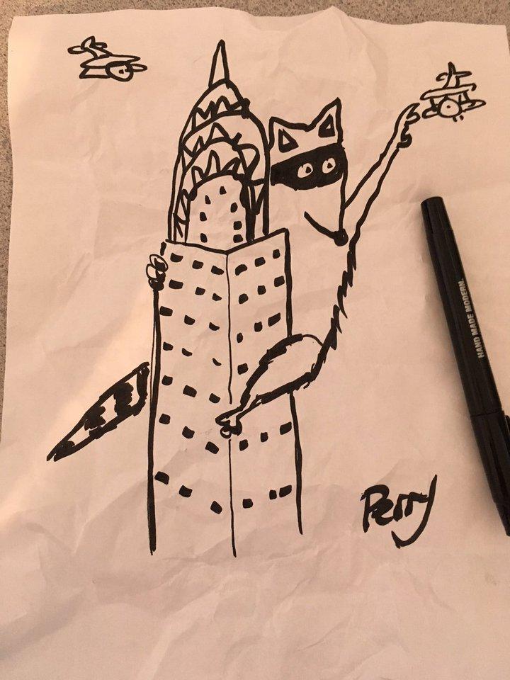 迷途浣熊在網上爆紅,還有插畫家特地為牠作畫。翻攝 Twitter/@timnelson_mpr
