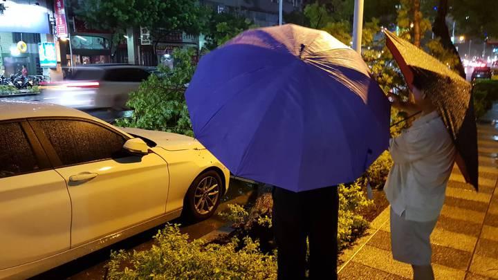 高雄晚上颳強風路樹壓倒雙B車,引起路人圍觀。記者謝梅芬/翻攝