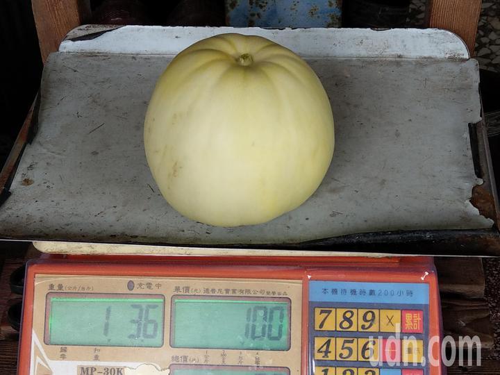 每顆蜜香瓜都超過1台斤重,果肉厚、甜度足。記者戴永華/攝影
