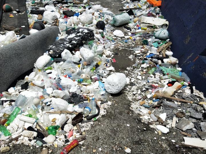 海大校門口前方海邊岸上滿布海漂垃圾。記者游明煌/攝影