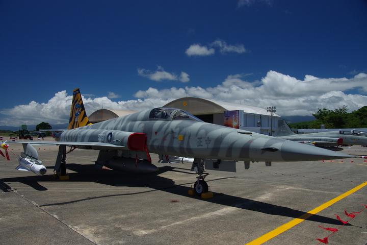 虎紋彩繪的F-5E戰鬥機。記者程嘉文/攝影