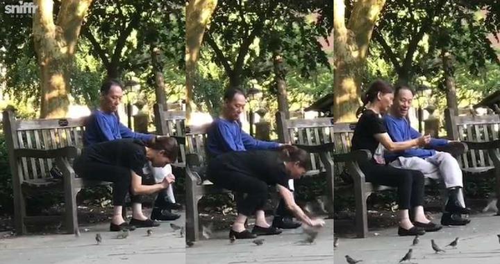 美國賓州費城華盛頓廣場10日一名大嬸空手捉麻雀,全程被人拍下上傳Instagram。接到檢舉的公園巡邏員抵達時,麻雀似乎已被放走。擷取與組合自Instagram/sniffrmedia