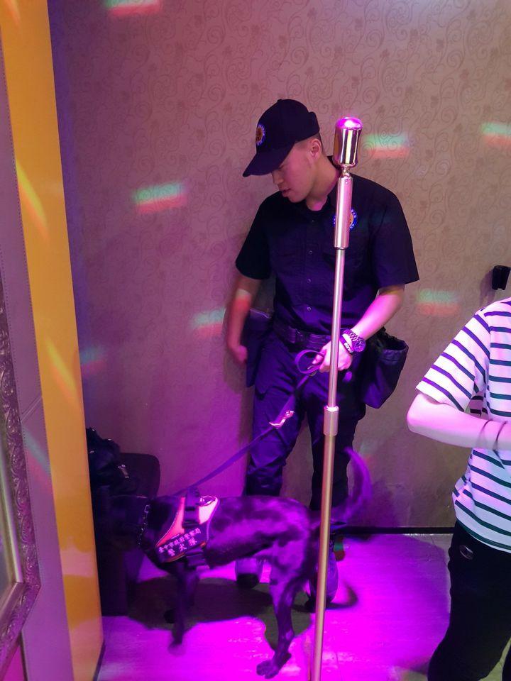 台中市警局今天凌晨突擊夜店,警犬Tiny嗅聞營業場所的各個角落,十分認真。記者陳宏睿/翻攝