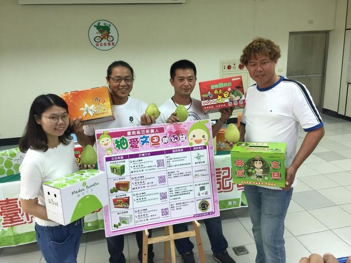 李羚卉(左起)、李佳翰、李政勳、李明彥義賣文旦,所得20%捐弱勢團體。記者吳政修/攝影