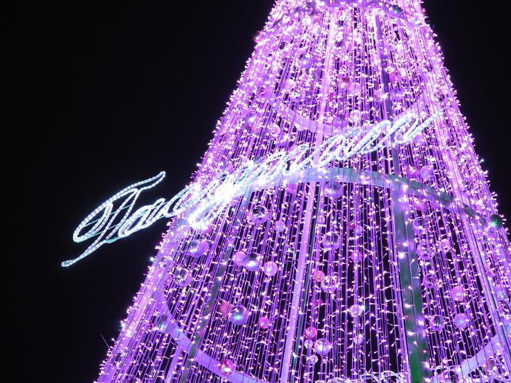 因應耶誕節慶來臨,桃園市政府在府前廣場架起10公尺高耶誕樹,並在市府旁人行道打造27公尺長燈廊,燈飾全用亮眼的桃粉色,今晚5點半正式點燈,每半小時還有一次燈光投影秀,將一路亮至24日平安夜。記者張裕珍/攝影