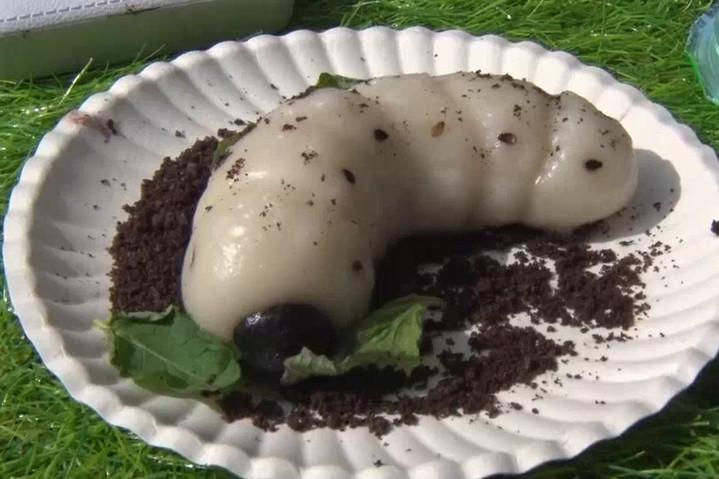 雞母蟲造型的麻糬。記者林敬家/攝影