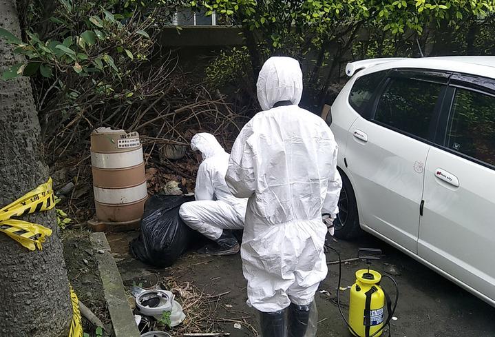 桃園市蘆竹區中圳路一處圳溝發現一隻病死豬。記者曾增勳/攝影