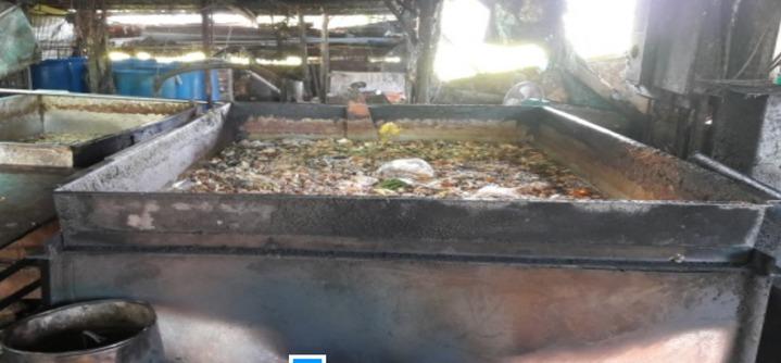 縣政府要求養豬戶必須把廚餘高溫蒸煮90度以上至少1小時,才能夠拿去餵豬。圖/縣府提供