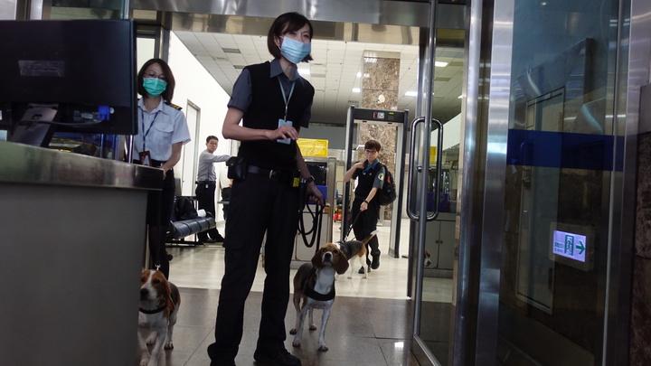 被踢的檢疫犬Jenna(中)與領犬員。記者劉星君/攝影