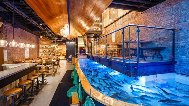 日本連鎖餐廳「釣船茶屋ざうお」美國紐約分店「Zauo NY」店內一景,藍光處即供顧客自己釣魚自己吃的水箱。Eater New York
