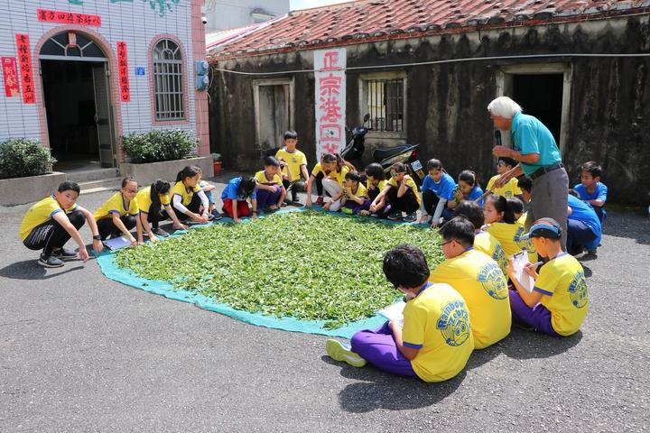一行人在屋前庭院前曬茶深入認識在地港口茶特色。圖/南大附小彩虹斑馬志工隊提供