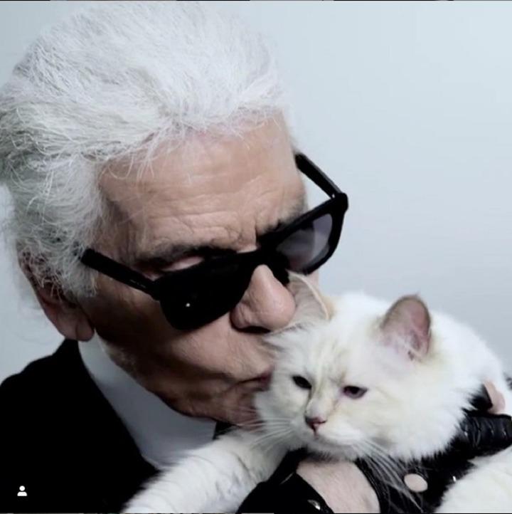 時尚大帝「老佛爺」卡爾.拉格斐(Karl Lagerfeld),台灣時間2月19日驚傳逝世,享壽85歲;除了擔任香奈兒藝術總監36年之外,他還是有名的「超級貓奴」。圖片擷取Instagram/choupettesdiary