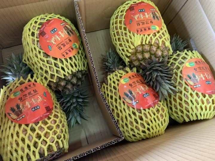 鳳梨是高雄外銷大陸的農產品主力,以金鑽鳳梨為大宗。圖/高雄市農業局提供