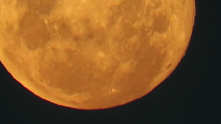南非克留格爾國家公園(Kruger National Park)的稀樹草原20日拍攝到超級月亮。路透/Newsflare