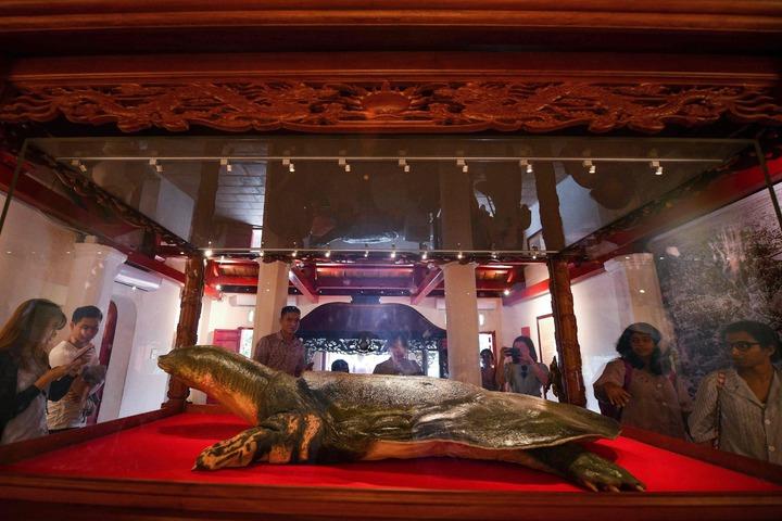象徵國家獨立的越南「護國神鱉」被製成標本供人瞻仰。在共產國家中,僅有列寧、毛澤東等領袖才能獲得這種特殊待遇。法新