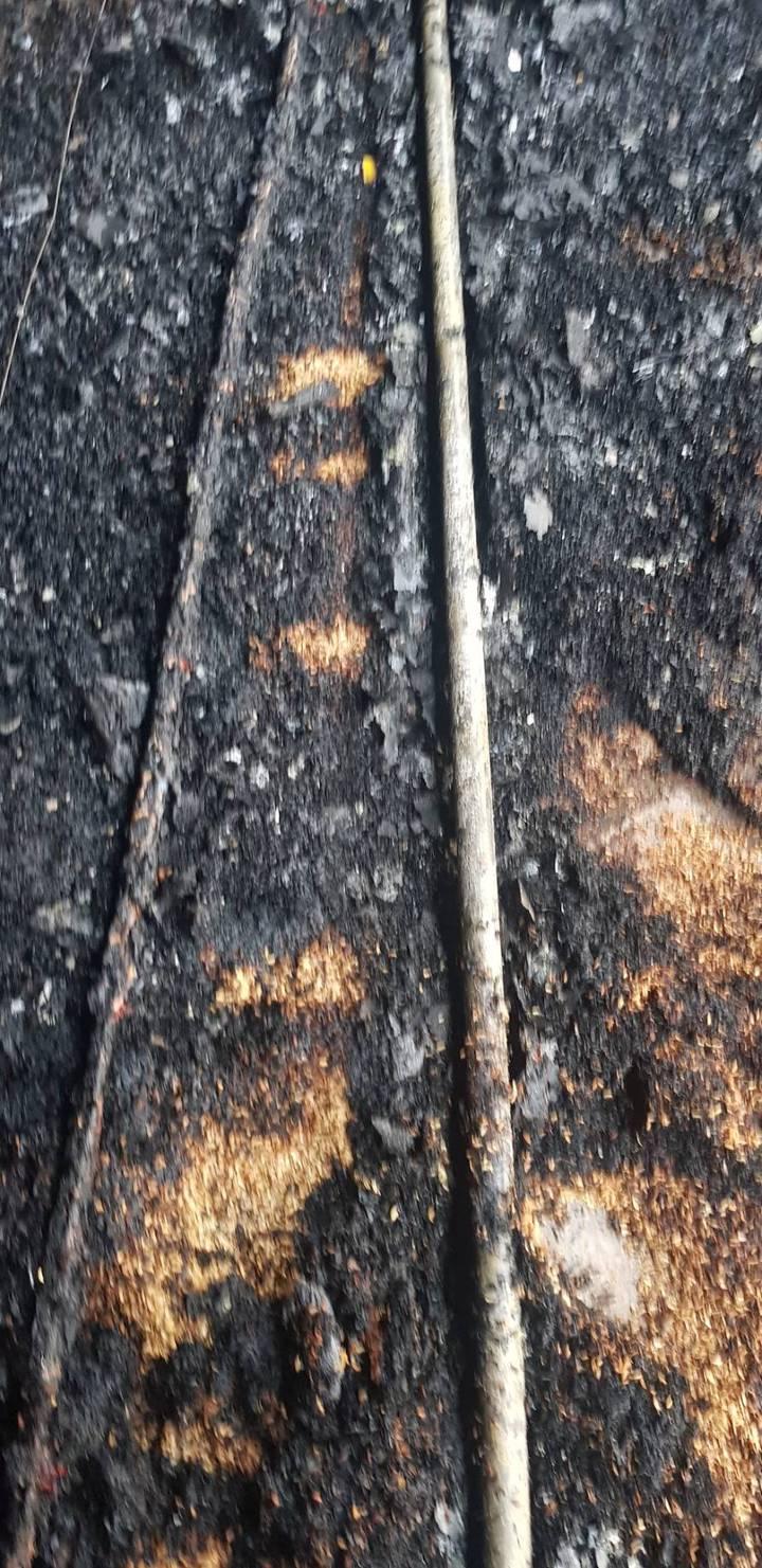 苗栗縣造橋鄉一家養雞場大火,現場地面有許多瓦斯管線,火勢一發不可收拾。圖/苗栗縣消防局提供