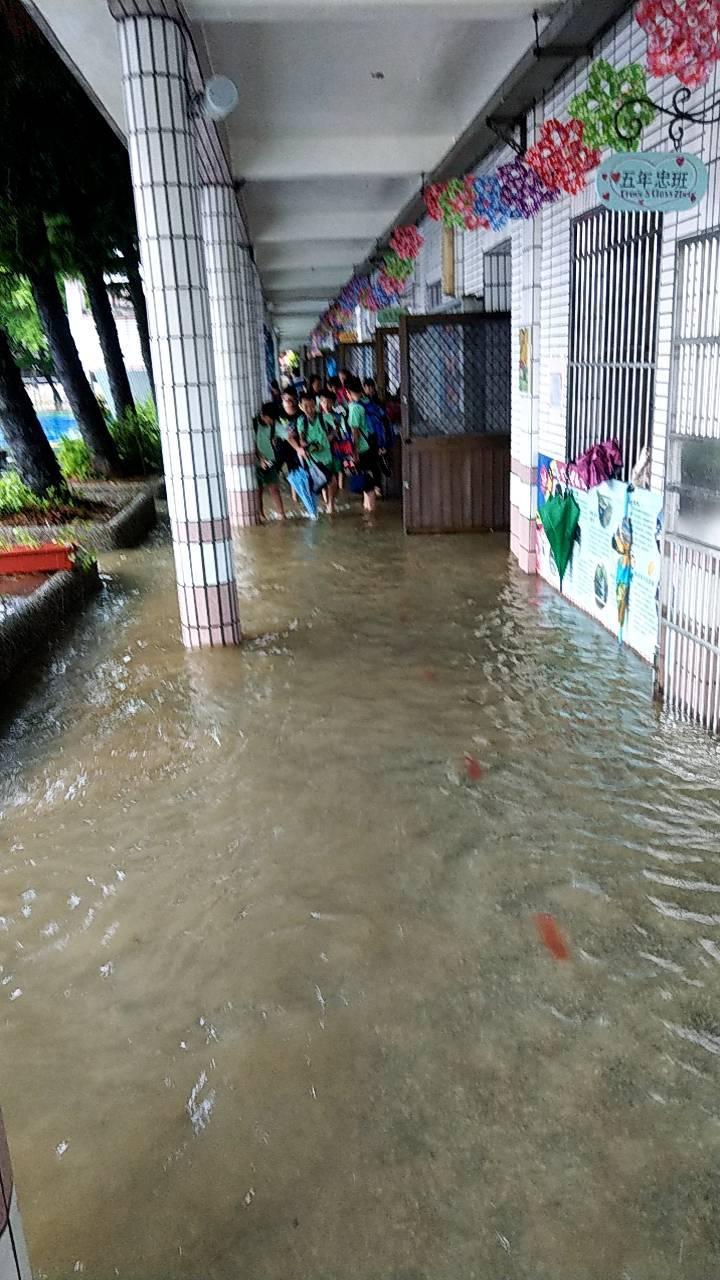 新屋大坡國小也淹水。圖/市議員邱佳亮提供