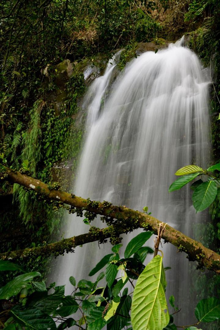 雨後的阿葉溪飛瀑之一。圖/陳昶達提供