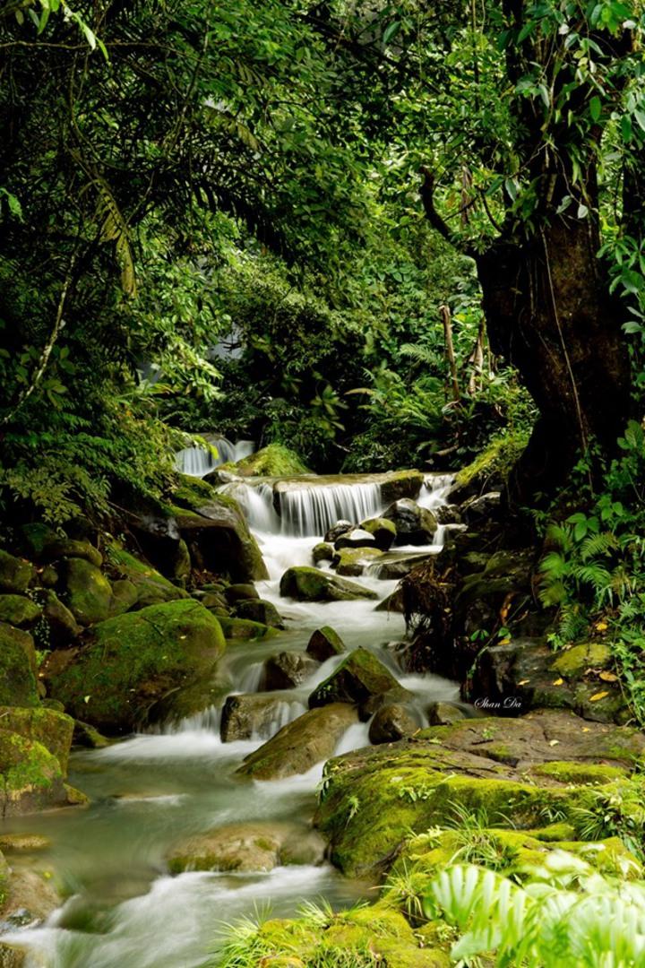 阿葉溪飛瀑是當地業者帶團的祕境。圖/陳昶達提供
