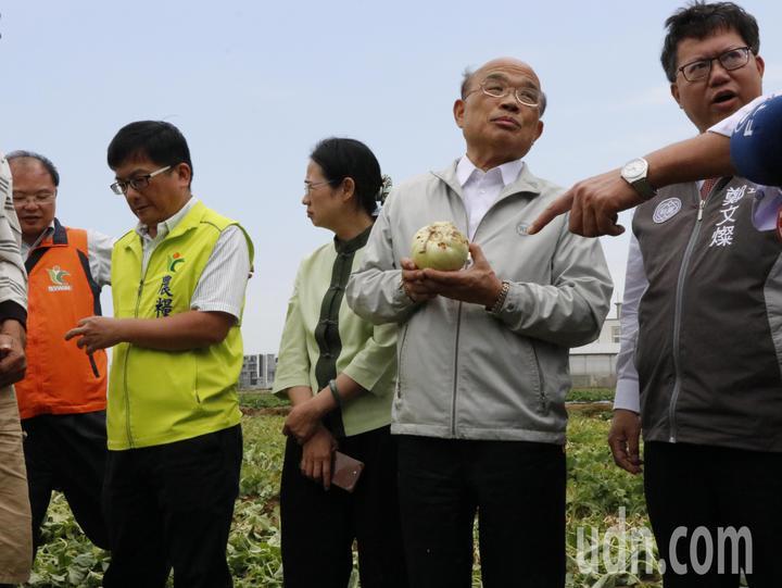 行政院長蘇貞昌(右二)與桃園市長鄭文燦(右一)今日前往觀音查看農損災情狀況。記者林育瑩/攝影