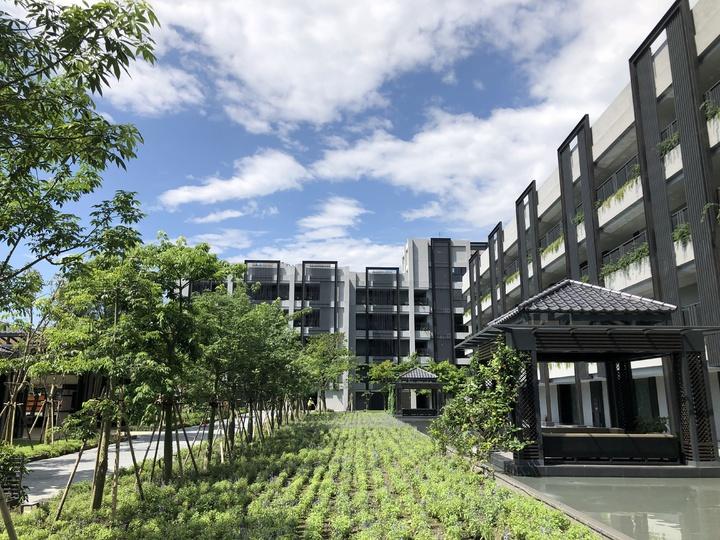 酒店共規劃142間客房,在規劃設計時,就將生態自然元素融入酒店每一個空間,從眼、耳、鼻、舌、身、意、境七感,感受花蓮大自然山林之氣,與有機香草的芳香療癒。記者宋健生/攝影