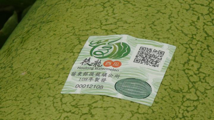 苗栗縣後龍鎮去年首創西瓜產地防偽標章,今年的標章還新增QR CODE溯源。記者胡蓬生/攝影