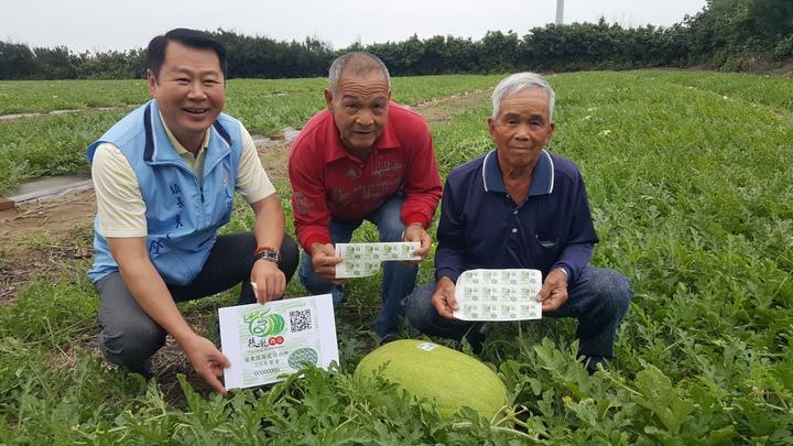 後龍西瓜有產地防偽標章,獲得農戶認同,一開放申請就核發2萬多張。記者胡蓬生/攝影