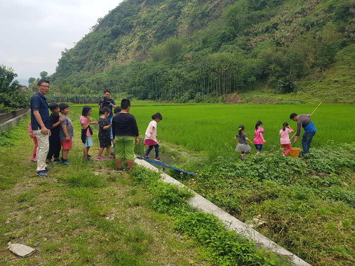 帶著孩子走出課本,親身體驗種田辛苦,更教會孩子懂得「珍惜」。記者廖惠玲/攝影