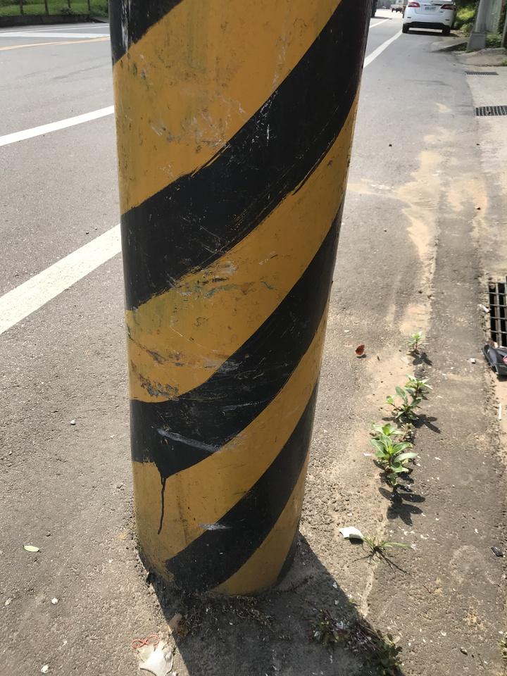 陳女死亡車禍案發地點的電線桿上,留有多道撞擊刮痕。記者林佩均/攝影
