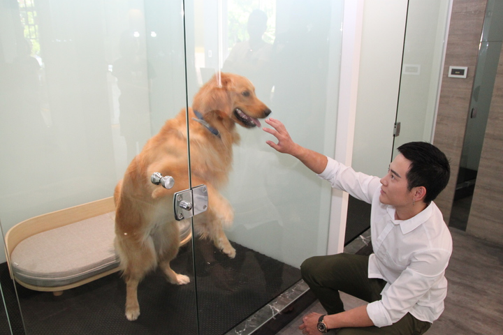 于立庭打造的寵物旅館裡,每一貓狗屋都以玻璃打造,地板可以滲水,方便清洗和做到乾溼分離。記者黃寅/攝影