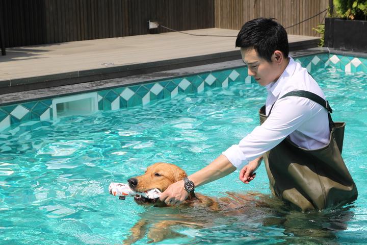 于立庭打造的寵物旅館設有戶外游泳池,主人下水得穿上連身防水衣。記者黃寅/攝影