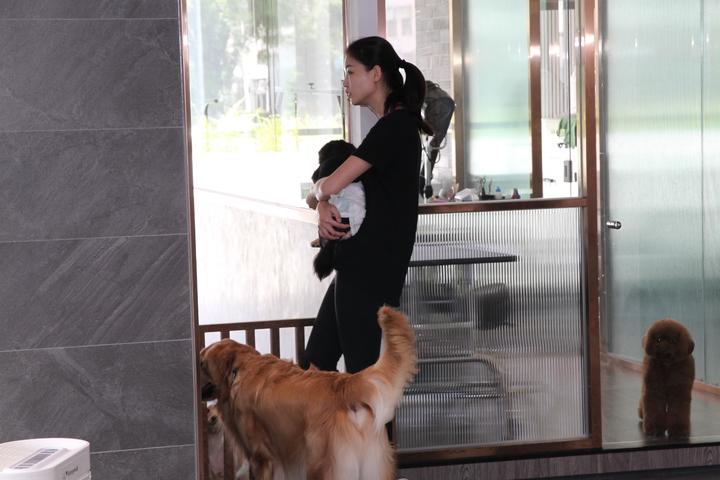 于立庭打造的寵物旅館裡,設有24小時的寵物保母,可以隨時陪伴和照顧。記者黃寅/攝影