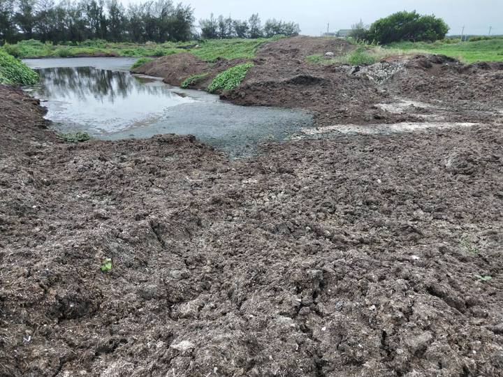 彰化縣芳苑鄉又有10筆農地被非法堆置食品業者生產後的汙泥,現場已產生發臭的汙水。記者何烱榮/攝影