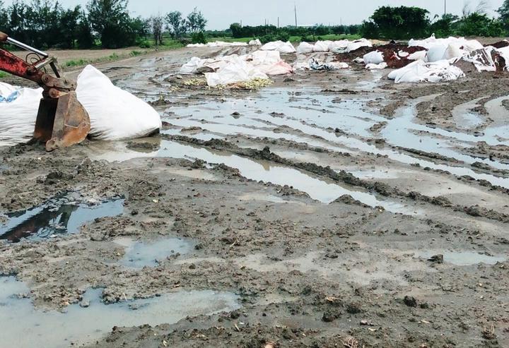 3家清運業者承攬國內3家知名食品公司生產後的汙泥,竟違法傾倒在彰化縣芳苑鄉多處農地。記者何烱榮/攝影