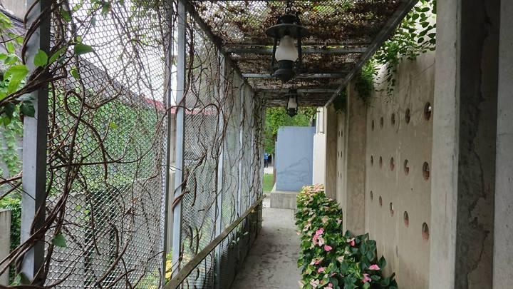 嘉義縣中埔鄉農會金蘭分部倉庫,其中一間打造成「最美農會營業廳」,外觀也做綠美化。記者卜敏正/攝影