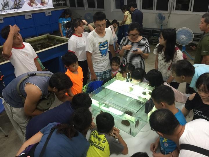 新北市政府今年在8月17日舉辦珊瑚小學堂,以觀察珊瑚產卵活動為內容,讓大小朋友從活潑有趣的互動式教學中,認識珊瑚及珊瑚有性生殖的秘密,也讓民眾對珊瑚保育有更深的了解。圖/新北市漁管處提供