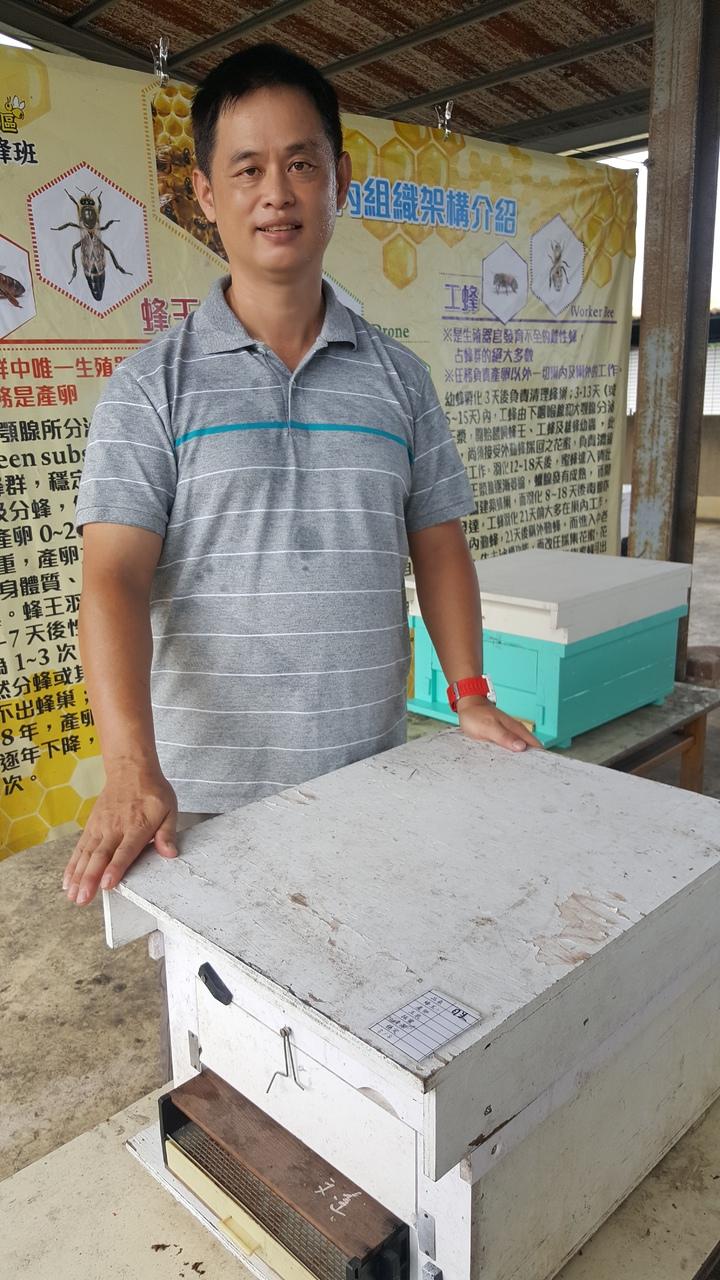 頭屋鄉明德社區總幹事謝文達推動社區養蜂,從他最早養的2箱,如今已發展到約200箱,養蜂志工多達50多人;今年社區更投入野蜂復育工作,展現成果。記者胡蓬生/攝影