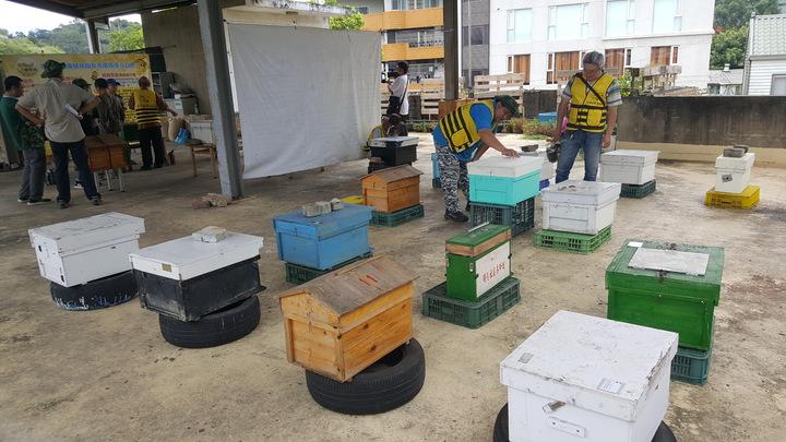 頭屋鄉明德社區活動中心樓頂有各式的蜂箱,都是班員自己動手打造,有的像小屋,凸顯休閒養蜂的趣味。記者胡蓬生/攝影