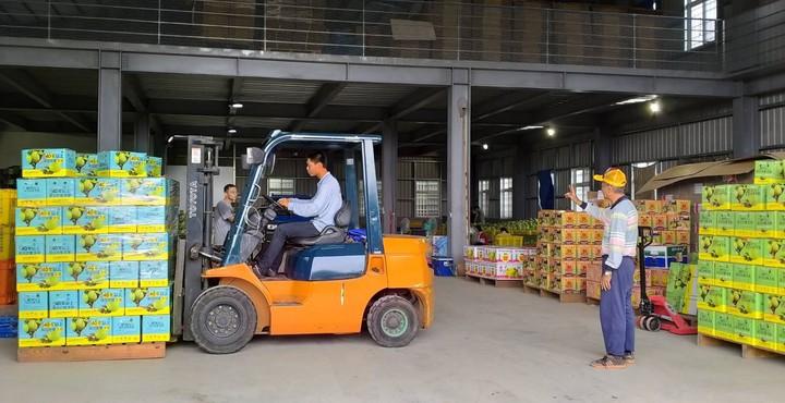 台南麻豆區柚農郭新聰表示,謝龍介有履行他的承諾,外銷大陸超過50貨櫃。圖/郭新聰提供