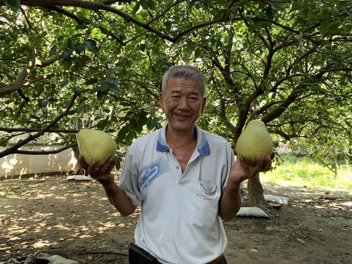 台南麻豆區柚農郭新聰表示,謝龍介有履行他的承諾。記者吳淑玲/攝影